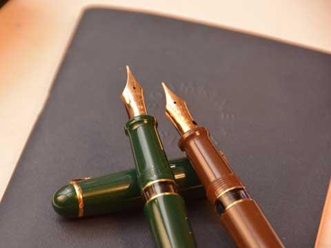 Flex 88 Pen Review